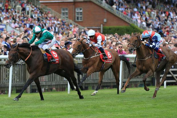 Which Horse Racing Venues Can Can You Scatter Ashes At