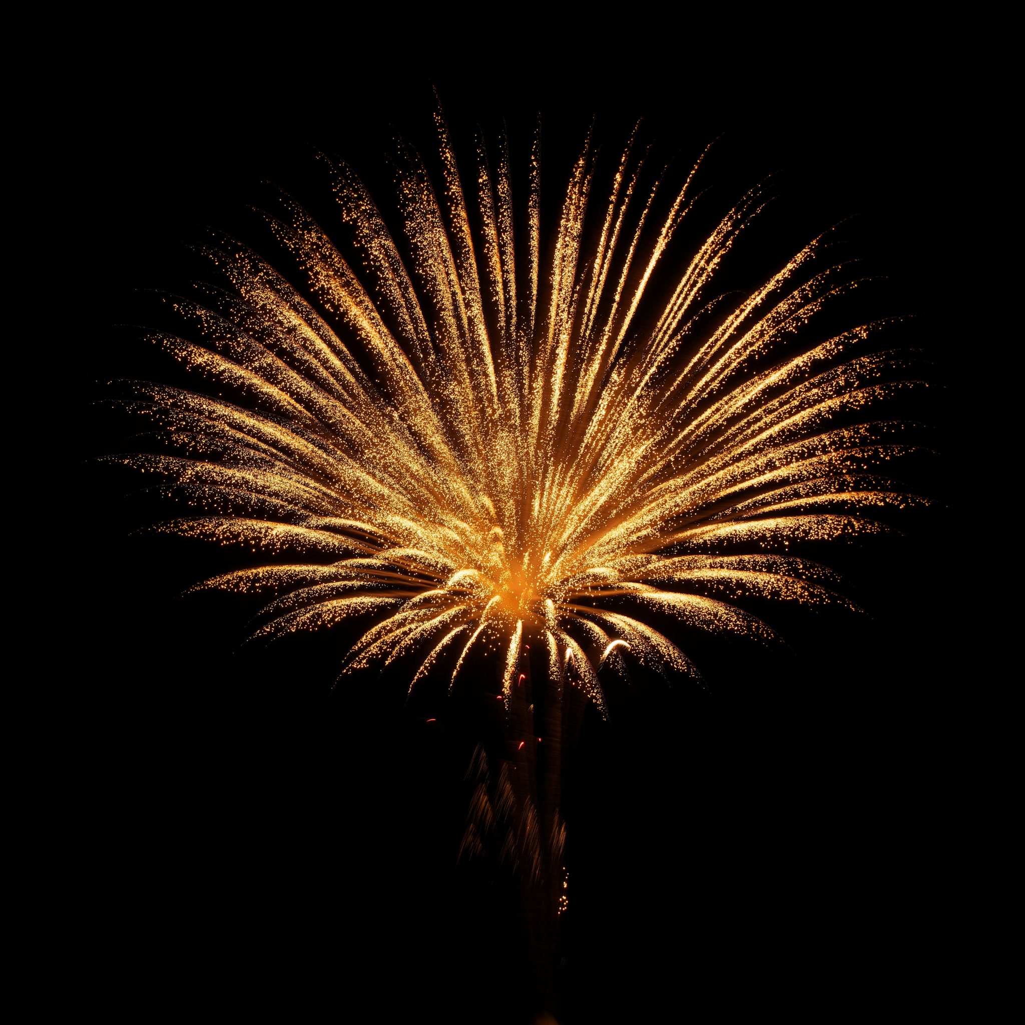 Ashes into Fireworks Display