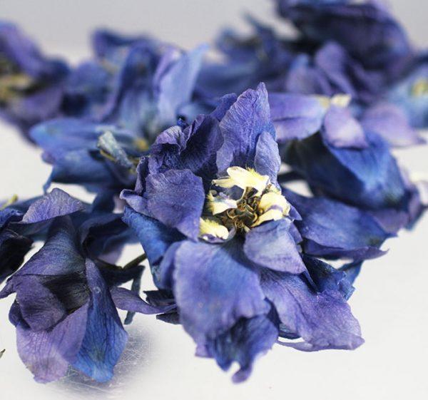Ceremony Flower petals delphinium