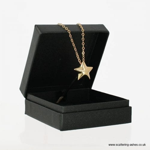 Gold Star Ashes Pendant Box
