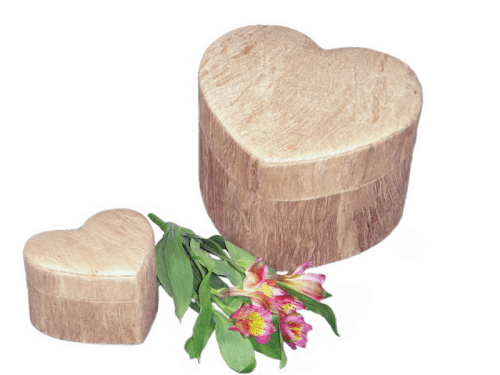 cremation ashes urn natural burial