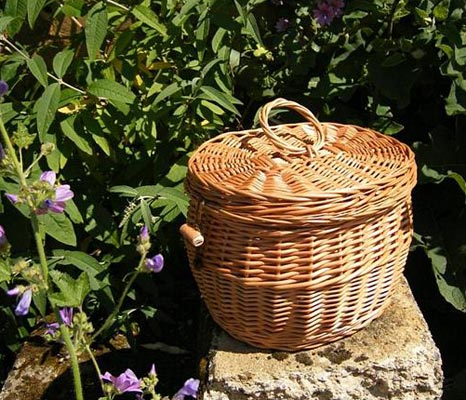 cremation urns natural burial ashes