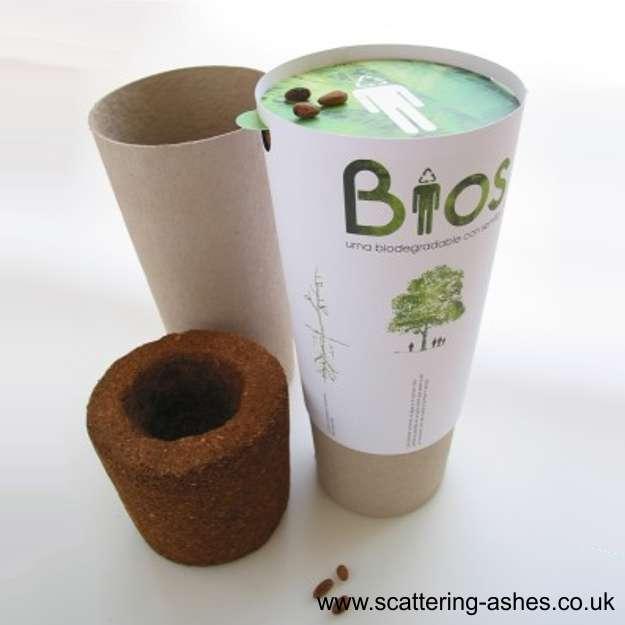 bios urn ashes burial tree