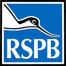 rspb cremated ashes