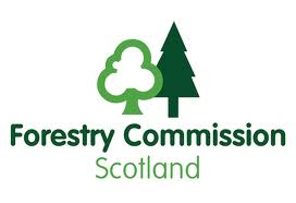 scotish forestry ash policy