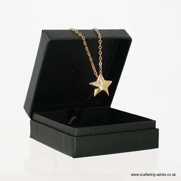 Gold star pendant vermeil gold necklace with star charm for ashes gold star pendant aloadofball Choice Image