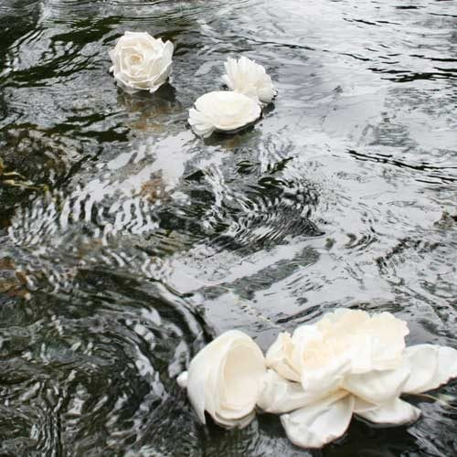 Floating water flower ceremony